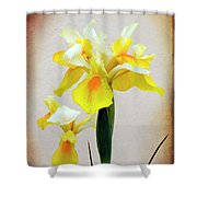 Yellow And White Iris Textured Shower Curtain