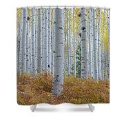 Yellow Aspen Grove Shower Curtain