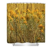Yellow Autumn Blooming Shower Curtain
