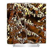 Yellow Autumn Leaves Fern Shower Curtain