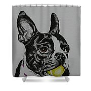 Yellow Ball  Shower Curtain