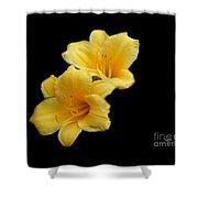 Yellow Beauty Shower Curtain