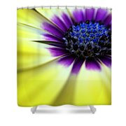 Yellow Beauty With A Hint Of Blue And Purple Shower Curtain