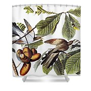 Yellow-billed Cuckoo Shower Curtain