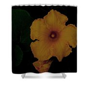 Yellow Bloom Shower Curtain