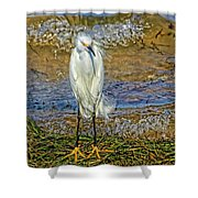 Yellow Boots Shower Curtain