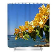 Yellow Bougainvillea Over The Mediterranean On The Island Of Cyprus Shower Curtain