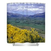 Yellow Broom Over Pasture In Dalefield Shower Curtain