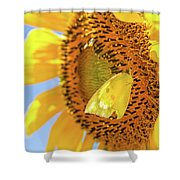 Yellow Butterfly And Sunflower Shower Curtain