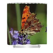 Yellow Butterfly No.2 Shower Curtain