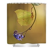 Yellow Butterfly On Blue Forget-me-not Flowers Shower Curtain