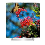 Yellow Butterfly On Red Flowers Shower Curtain