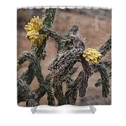 Yellow Cactus Shower Curtain