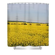 Yellow Canola Field Shower Curtain