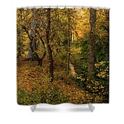 yellow Carpet Shower Curtain