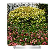 Yellow Coleus And Lantana At Pilgrim Place In Claremont-california Shower Curtain