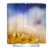 Yellow Coral Reef Macro Shower Curtain