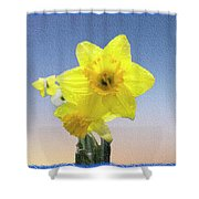 Yellow Daffodil On Canvas Shower Curtain