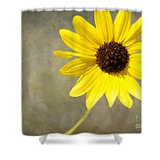 Yellow Daisy By Darrell Hutto Shower Curtain