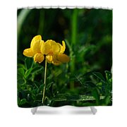Yellow Dew Drops Shower Curtain
