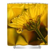 Yellow Drip Shower Curtain