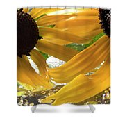 Yellow Droplet Petals Shower Curtain