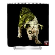 Yellow English Bulldog Dog Art - 1368 - Bb Shower Curtain