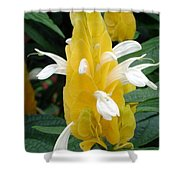 Yellow Eruption Shower Curtain