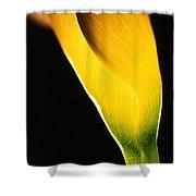 Yellow Essence Shower Curtain