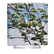 Yellow Finch And Flowers Shower Curtain