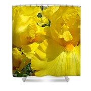 Yellow Floral Irises Flowers Art Prints Baslee Troutman Shower Curtain