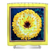 Yellow Flower H B With Decorative Ornate Printed Frame Shower Curtain