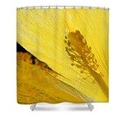 Yellow Flower - Hibiscus Shadow - Sharon Cummings Shower Curtain