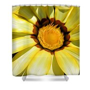 Yellow Flower In The Sun Shower Curtain