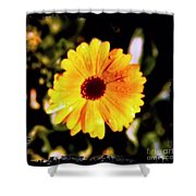 Yellow Flower With Rain Drops Shower Curtain