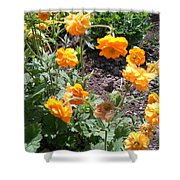 Yellow Flowers Bushes Shower Curtain