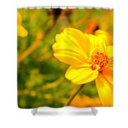 Summers Glory In Bloom By Earl's Photography Shower Curtain