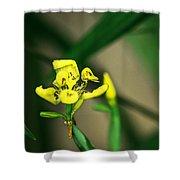 Yellow Flowers I Shower Curtain