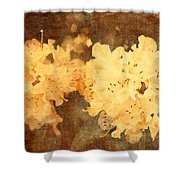 Yellow Flowers In Bloom Shower Curtain