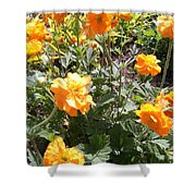 Yellow Flowers In May Shower Curtain