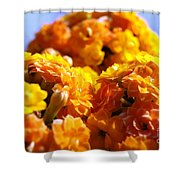 Yellow Flowers Shower Curtain