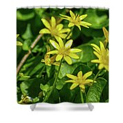 Yellow Flowers On A Green Carpet Shower Curtain