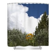 Yellow Flowers White Cloud Shower Curtain
