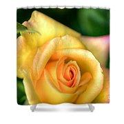 Yellow Golden Single Rose Shower Curtain
