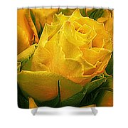 Yellow Green Rose Shower Curtain