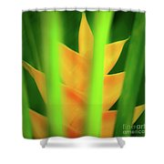 Yellow Heliconia - Tropical Hawaii - 957 Shower Curtain