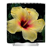 Yellow Hibicus Shower Curtain