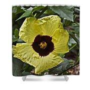 Yellow Hibiscus F134 Shower Curtain