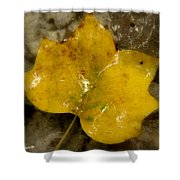 Yellow Ice Shower Curtain