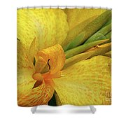 Yellow In The Morning Shower Curtain